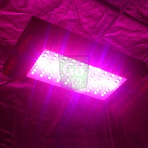 240-Watt Full Spectrum G8LED Bloom Only